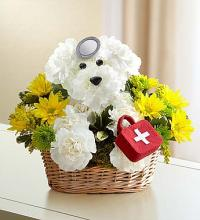 Doggie Howser MD