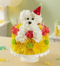 Birthday Wishes Flower Cake Pupcake