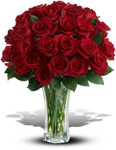 Love and Devotion - 24, 30, 36 Long Stemmed Red Roses