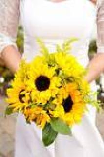 Holly\'s Weddings